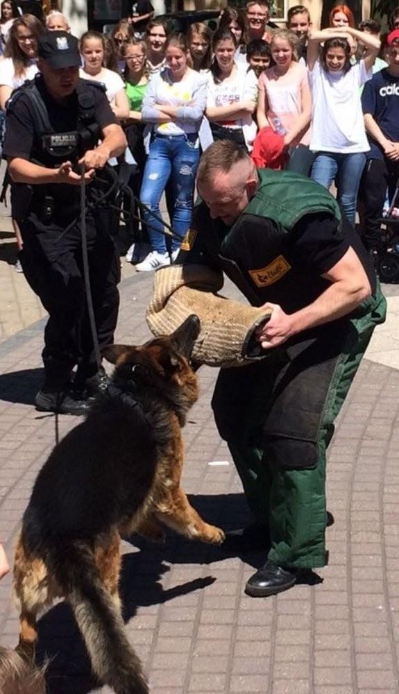 Bari, pies strzeleckich policjantów odszedł na emeryturę.