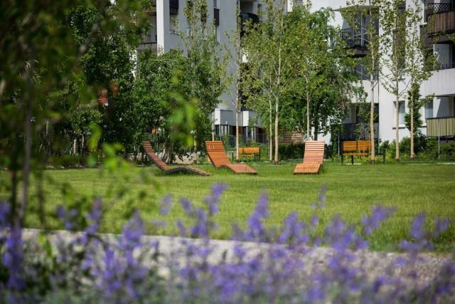 Park Czyżyny przy osiedlu Avia