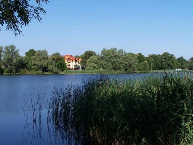 Na jeziorze Górnym w Strzelcach Krajeńskich obowiązuje zakaz kąpieli do odwołania.