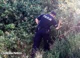 Gorzów: policjanci porzucili domowego obowiązki, by szukać zaginionej 9-latki. W akcji brało udział 150 policjantów!