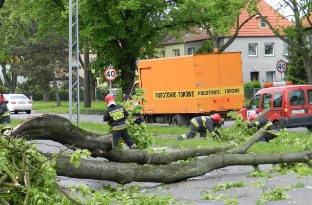 Zdjęcia przewróconego przez wiatr drzewa na ul. Ku Słońcu przesłał nam internauta na alarm@gs24.pl