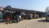 Kolejne samorządy w regionie radomskim zamykają lokalne targowiska z powodu zagrożenia koranawirusem