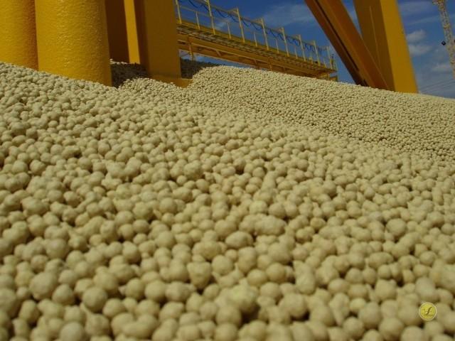 Żółte złoto, czyli grzybowska siarka, dała zarobić Siarkopolowi w ubiegłym roku aż 196 milionów złotych na czysto!
