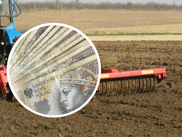 Ilu podlaskich rolników otrzymało już całe dopłaty? Mamy aktualne daneNiespełna 43 proc. podlaskich rolników ma już na kontach całe dopłaty