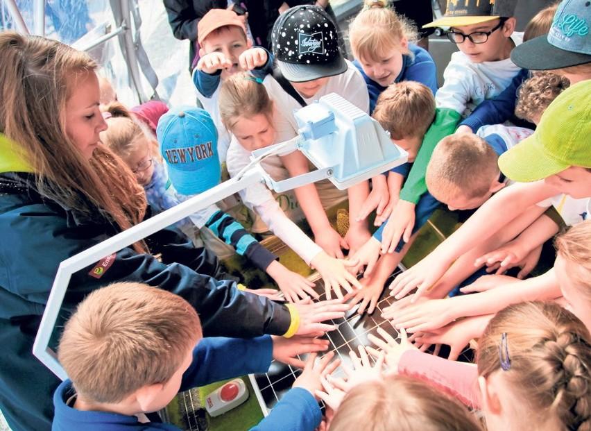"""Przystąpienie do projektu """"Planeta Energii"""" to szansa na zaciekawienie najmłodszych tym, jak powstaje prąd"""