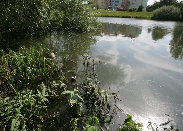 Zapowiadało się na to, że Jeziorko Słoneczne wreszcie doczeka się gruntownego oczyszczenia i stanie się miejscem wypoczynku mieszkańców. Prace poszły jednak na marne, gdyż do akwenu nadal wpływają ścieki.