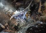 Gosie Małe. Pożar samochodu przy S8. Auto spłonęło doszczętnie (zdjęcia)