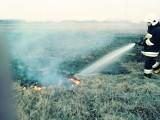 Wypalanie traw w województwie podlaskim 2018. Pożary traw na wiosnę to największa zmora strażaków. Interweniowali już kilkadziesiąt razy