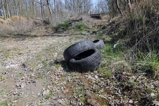 Śmieci w lasach to, niestety, nic nowego.