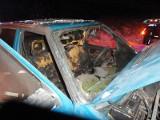 DK 75. Samochód osobowy zapalił się na drodze do granicy