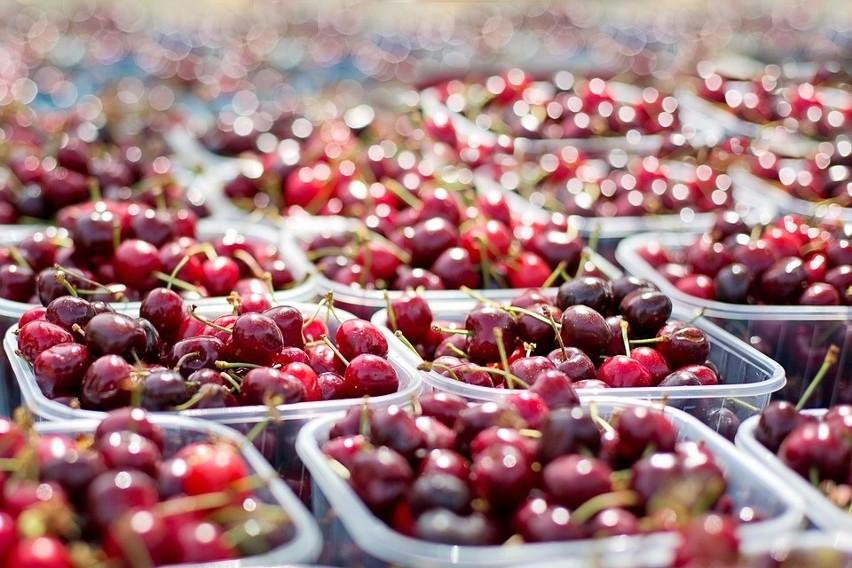 Czereśniowy sezon jest krótki, a ceny tych owoców potrafią...