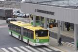 MZK w Zielonej Górze stanie się spółką. Co to oznacza dla mieszkańców i pasażerów korzystających z autobusów?