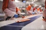 52 cudzoziemców nielegalnie pracowało w przetwórni ryb na Pomorzu. Wśród nich Ukraińcy, Bialorusini i Gruzini