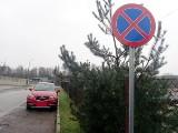 Mistrzowie parkowania w Rybniku. Bohaterów prezentuje Straż Miejska. Zobaczcie zdjęcia