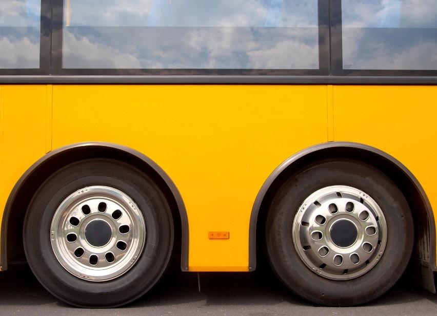 Kołobrzeg. Nowe autobusy dla Komunikacji MiejskiejDostawca autobusów dla Kołobrzegu wyłoniony został w trakcie rozstrzygniętego w styczniu nieograniczonego przetargu.