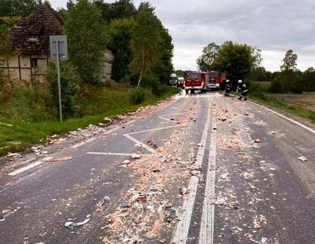 Śmierdząca kolizja. Cuchnące odpadki ryb na drodze 211.
