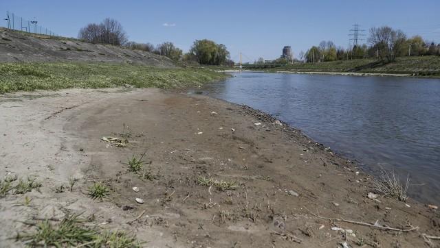 Z dnia na dzień opada poziom wody w Wisłoku. Tak w czwartek wyglądała rzeka w Rzeszowie. Czy czeka nas największa od lat susza?PRZECZYTAJ TEŻ: Najpierw koronawirus, później susza. To może zniszczyć podkarpackie plantacje