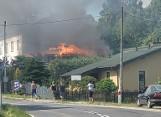 Pożar domu w Rzucowie pod Przysuchą. Z ogniem walczyły cztery jednostki straży pożarnej