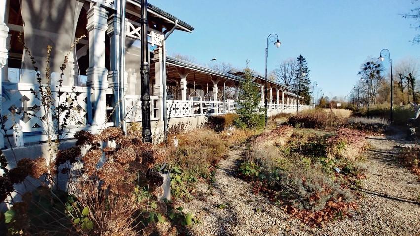 Tuż przy stacji znajduje się ogród z ogromną ilością...
