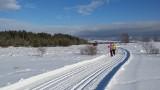 Nowy Targ. Doskonałe warunki na trasach biegowych dla narciarzy [ZDJĘCIA]
