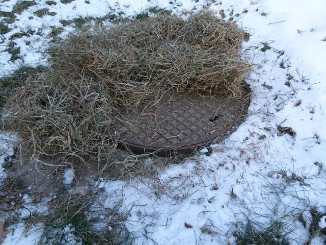 Studzienki, w których znajdują się wodomierze najlepiej przykryć na zimę sianem, liśćmi lub styropianem.