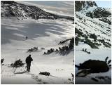 Pomór kozic w Tatrach! Czy będziemy świadkami ekologicznej tragedii? [ZDJĘCIA]