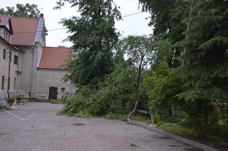 Spustoszone Mikołajki Pomorskie i okolicy po nawałnicy,...