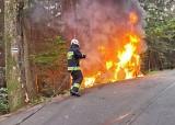 Straszny wypadek. Świadkowie wyciągali kierowcę z płonącego samochodu (ZDJĘCIA)