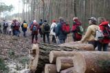 Ludzie zamiast na cmentarze poszli w lasy. Wiosną też poszli i lasy im zamknięto