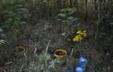 Uprawiali marihuanę w lesie pomiędzy Ujazdem a Sulmierzycami. Wpadli, bo przyjechali podlać hodowlę
