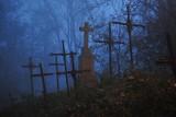 Zapomniany, niesamowity cmentarz. Tu rośnie las krzyży niechcianych [ZDJĘCIA]