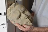 ZIELONA GÓRA. Trwa rozbudowa Muzeum Ziemi Lubuskiej w Zielonej Górze. Podczas prac natrafiono na głowę oraz…