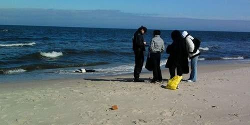 W Unieściu morskie fale wyrzuciły na brzeg zwłoki.