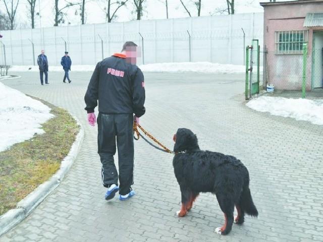 Zajęcia z psem w Areszcie Śledczym w Hajnówce.