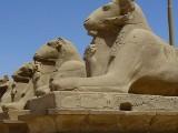 Tutaj faraonowie czcili Amona  (zdjęcia)