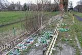 Zarośnięty stadion Czarnych Szczecin. Co będzie z tym terenem? Zobacz ZDJĘCIA