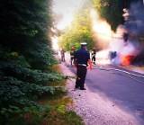 Samochód po zderzeniu z sarną wpadł na drzewo i zaczął się palić ZDJĘCIA 10.07.2019