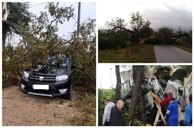 IMGW w Białymstoku od wczoraj ostrzega przed silnym wiatrem w całym województwie.
