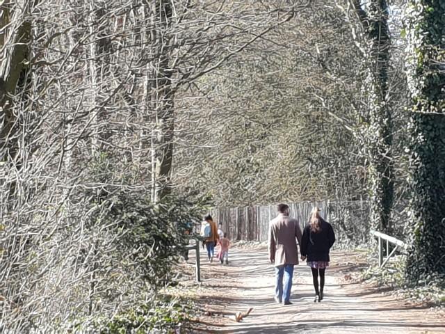 Arboretum w Rogowie zachęcało, aby korzystać z przylegających do niego lasów. Profil tej instytucji na Facebooku przekonywał, że zakaz wstępu wydany przez Lasy Państwowe, w związku z epidemią koronawirusa, terenów wokół Arboretum nie dotyczy (zdjęcie z Rogowa z niedzieli - 5 kwietnia).>>> Czytaj dalej na kolejnym slajdzie >>>