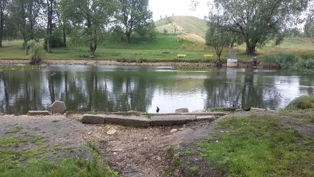 W jeziorku przy Górce Środulskiej jest coraz mniej wody
