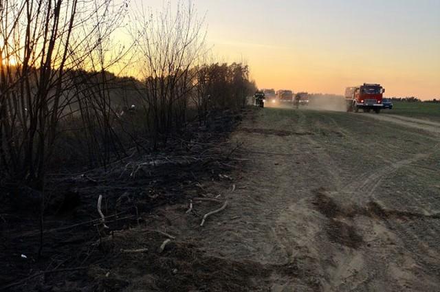 W niedzielę popołudniu w okolicach Kłanina doszło do pożaru lasu. W jego gaszeniu udział brało siedem jednostek straży pożarnej oraz samolot i śmigłowiec gaśniczy. O zdarzeniu na swoim profilu facebookowym poinformowała dziś Ochotnicza Straż Pożarna w Kłaninie. Strażacy zostali do niego zadysponowani o godz. 14:31. - Akcja gaśnicza była utrudniona przez zły dojazd do miejsca zdarzenia. Spaleniu uległo około 3 hektarów obszaru leśnego - podają strażacy.Na miejscu były jednostki: OSP Bobolice, OSP Drzewiany, OSP Porost, OSP Niedalino, OSP Świeszyno, OSP Tychowo, JRG 2 Koszalin oraz samolot i śmigłowiec gaśniczy.Przypomnijmy, że już co najmniej o tygodnia w różnych miejscach naszego regionu dochodzi do pożarów trwa, trzcin i lasów. W ostatnich dniach informowaliśmy m.in. o pożarach na koszalińskiej Górze Chełmskiej, czy też w powiecie drawskim. Powód? Słoneczna pogoda, na łąkach i w lasach zrobiło się sucho.Zobacz także: Koszalin: Ćwiczenia Straży Pożarnej przy przystani Koszałka