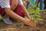 Zadbaj z nami o środowisko na Błoniach Nadwiślańskich w Grudziądzu