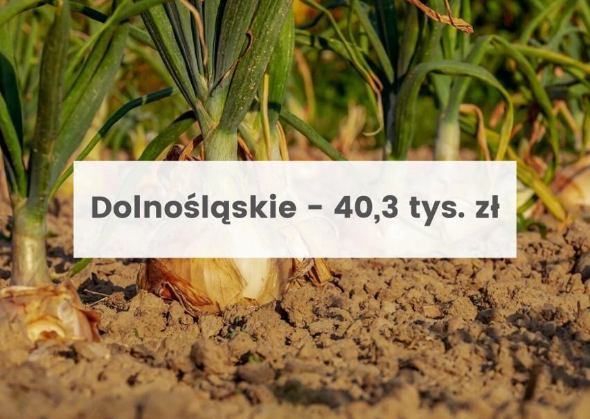 Aktualne ceny ziemi rolnej 2021. Od maja obowiązują nowe stawki [dane dla województw]