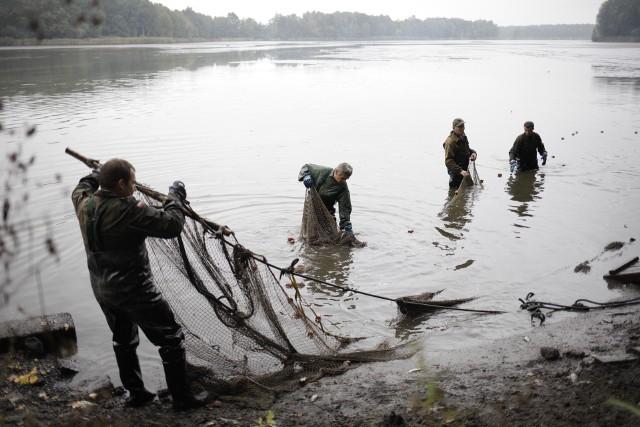 Nie tylko hodowlą ryb zajmują się rybacy z Opolszczyzny. Dbają też o to, by stawy pełniły wiele innych funkcji. Od 2010 roku dostawali na to unijne dopłaty. Liczyli, że będzie tak nadal.