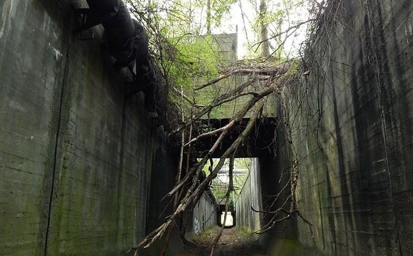 Niezwykły tunel kolei piaskowej, o którym wiedzą nieliczni.Zobacz kolejne zdjęcia. Przesuwaj zdjęcia w prawo - naciśnij strzałkę lub przycisk NASTĘPNE