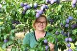 W Szydłowie świat kręci się wokół śliwki. Firma  Purple Valley Agnieszki Baxter ma nowe produkty i certyfikaty