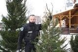Przed świętami: nie wycinaj choinki z Tatr. Grozi za to spory mandat