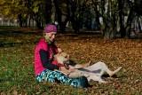 Pabianice. Psy z Pabianic polecają się do adopcji. Właściciel jednego z nich zmarł