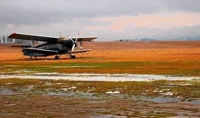 Na razie Nowy Targ ma trawiaste lotnisko sportowe. Czy powstanie tam pasażerski port lotniczy? FOT. ŁUKASZ BOBEK