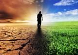Ekologia staje się biznesem. I to jest szansa dla ratowania klimatu